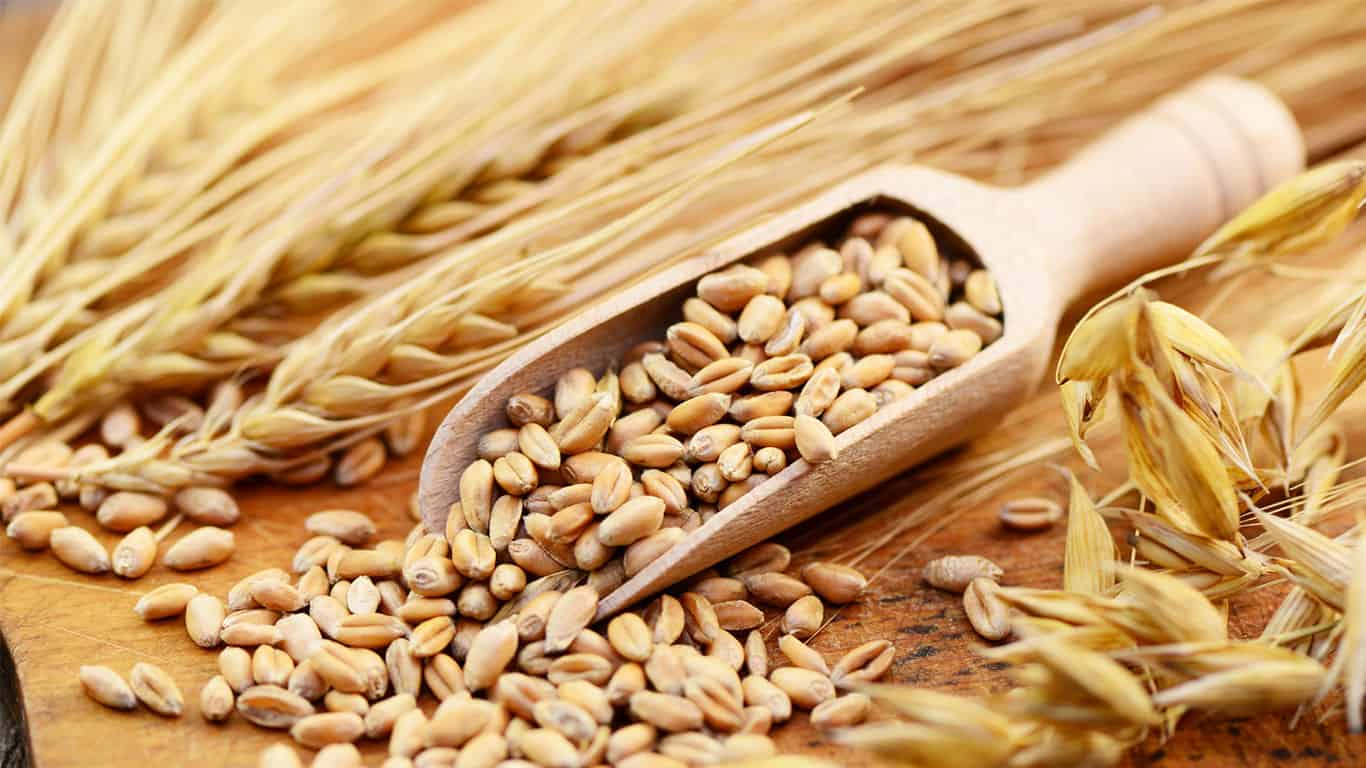 Gluten Allergy © fotolia / photocrew