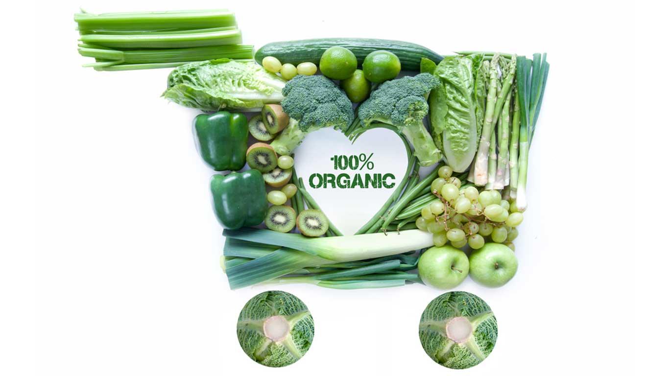 Embrace Organics © Pixelbliss/Shutterstock.com