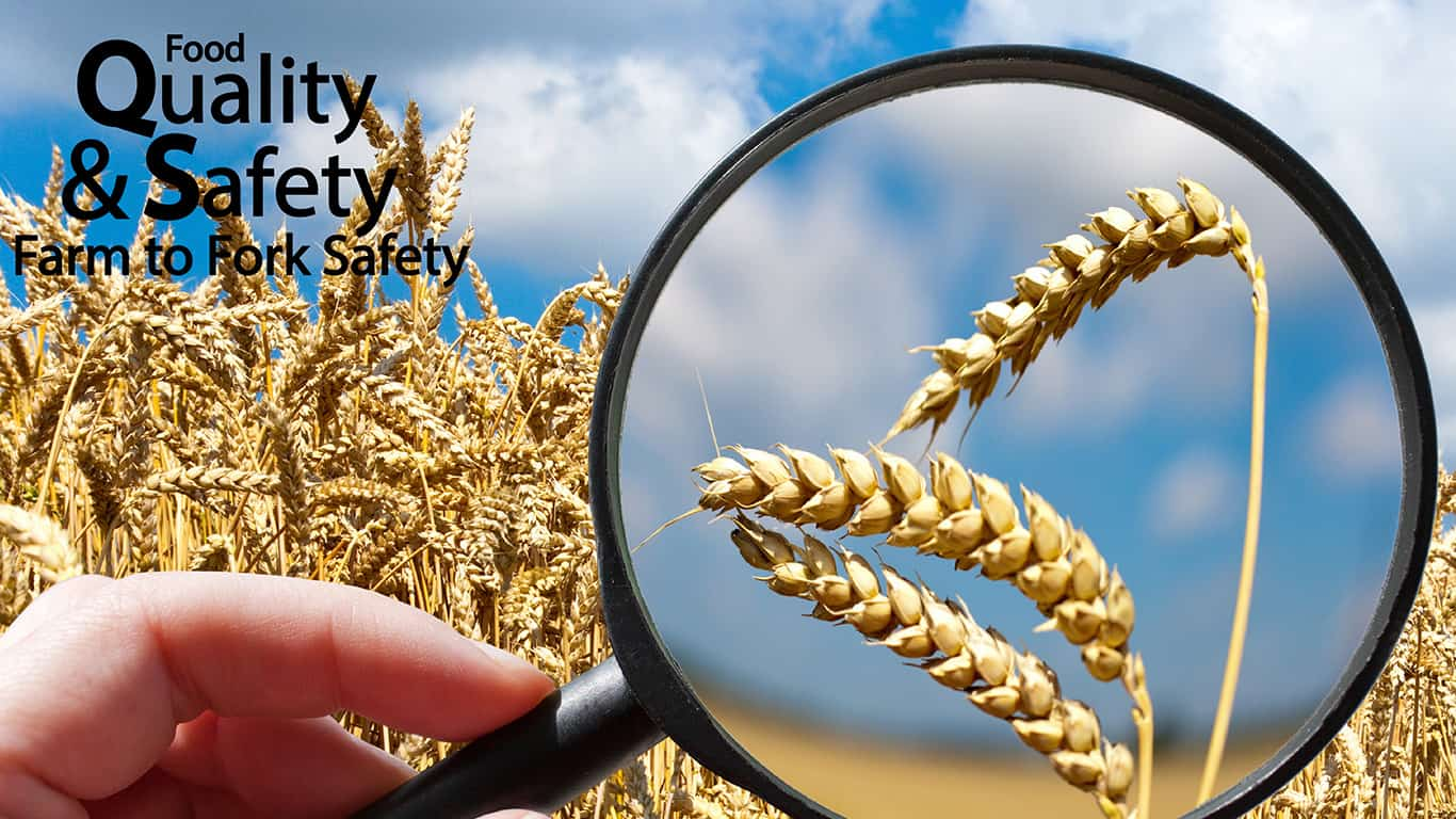 food safety © kaprik/Shutterstock.com