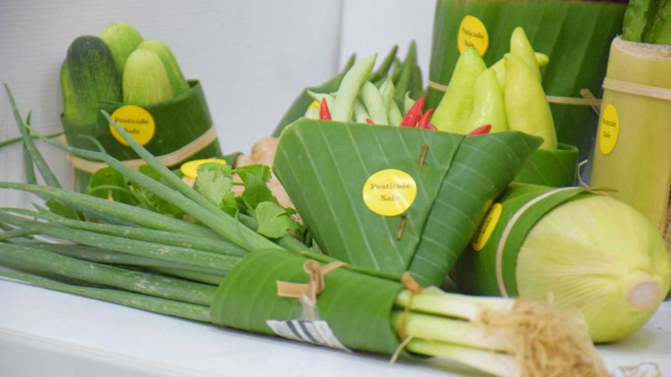 A bunch of spring onions and other green vegetables lies on a table.